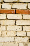 Background of white brick wall  horizontal red row Royalty Free Stock Image
