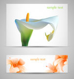 Background with White Calla and orange lilies Royalty Free Stock Photography
