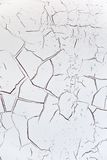 Background white cracked Royalty Free Stock Images