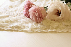 Background of white delicate lace fabric Royalty Free Stock Image