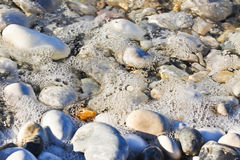 Background with white and gray stones softly rounded and washed. From sea water Stock Image