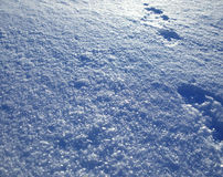 Background of white snow Stock Photos