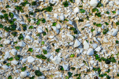 Background with white stones and green glass Stock Photos