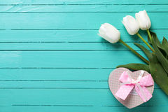 Background with white tulip flowers and gift box in form of hear Royalty Free Stock Images