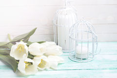 Background with  white tulips and candles. Stock Images