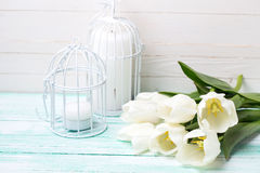 Background with  white tulips and candles. Royalty Free Stock Image