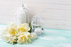 Background with  white tulips, narcissus  and candles. Stock Image