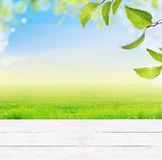 Background with white wooden table,grass,green leaves,blue sky,grass and bokeh. Summer spring background with white wooden table,grass,green leaves,blue sky Royalty Free Stock Photography