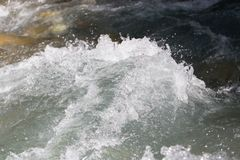 Background of whitewater on the river Stock Photography