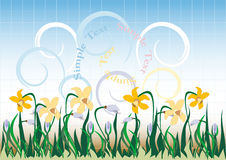 Background  with  wildflowers. Banner. Wallpaper. Stock Images