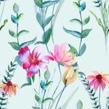 Background of wildflowers. Seamless pattern. Stock Photos