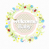 Background wildflowers wreath and banner, welcome baby. vector illustration. Background wildflowers wreath and banner, welcome baby. lovely flowers, butterflies Stock Photos