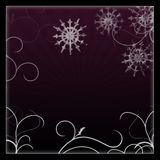 Background winter Royalty Free Stock Images