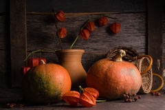 Background with winter cherry and pumpkin Stock Image