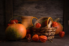 Background with winter cherry and pumpkin Royalty Free Stock Image