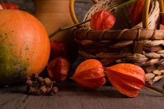 Background with winter cherry and pumpkin Stock Images
