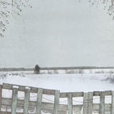 Background for winter design Stock Image