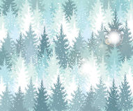 Background with winter forest Royalty Free Stock Photography