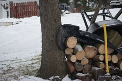 Background with Winter Snow Logs and Wheelbarrow royalty free stock photo