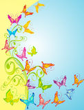 Background With Butterflies, Floral Ornate, Vector Stock Image
