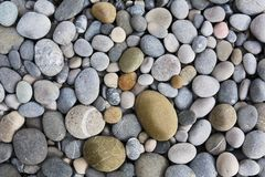 Free Background With Round Peeble Stones Royalty Free Stock Images - 29847579