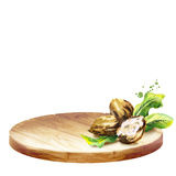 Background withBackground with platter and shea nuts with butter. Watercolor handplatter and pine cones with nuts. Watercolor bac. Background with platter and stock illustration