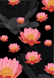 Background withpink lotus flowers Stock Photography