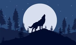 Background Wolves at night forest silhouette stock illustration