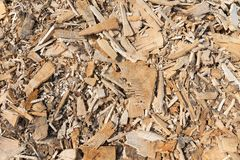 Background of wood chippings. Background of many wood chippings after cutting a tree royalty free stock photography