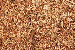 Background wood in chips for landscaping in the gardens. Ecological background. royalty free stock images