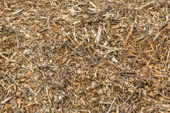 Background of wood chips and sawdust. Background made of wood chips and sawdust Stock Images