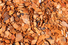 Background of wood chips scattered orange Royalty Free Stock Images