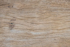 Background of wood for design Stock Images