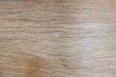 Background of wood for design Royalty Free Stock Photography