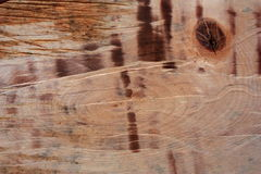 Background of wood. Royalty Free Stock Images