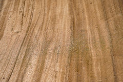 Background wood grain surface Royalty Free Stock Images