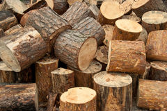Background  wood  logs Royalty Free Stock Images