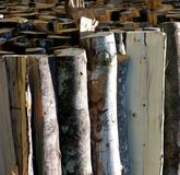 Background Wood material construction abstract Royalty Free Stock Image