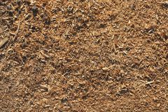 Background of wood shavings. Brown background of wood shavings Stock Photos