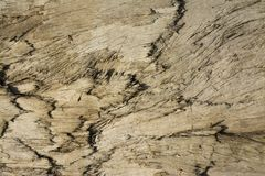 Background of wood texture royalty free stock photos