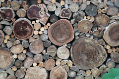 Background of wooden architecture: an old log wall. Stock Photos