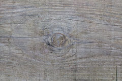 Background of wooden boards with a bough Royalty Free Stock Photos