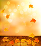 Background with wooden floor and autumn leaves. Royalty Free Stock Photography