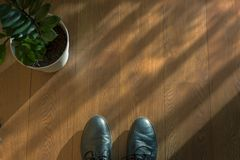 Background, wooden floor with flower and boots. Sharp Stock Photography