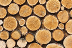 Background of wooden logs sawn across stock image