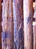 Background of wooden poles.  Stock Images
