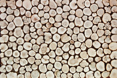Background of wooden slices. Of tree Royalty Free Stock Image