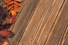 Background with wooden table and autumnal leaves Stock Photos