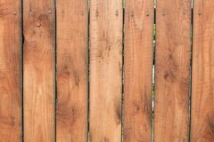 Wooden texture, fence of wooden boards, vertical stripes. Background of wooden texture, fence of wooden boards, vertical stripes royalty free stock images