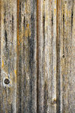 Background wooden texture Royalty Free Stock Photos
